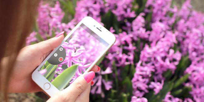 SmartPlantPi, il tuo primo giardino… Smart!